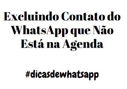 Apaguei o Contato da Agenda mas Continua no Whatsapp - o que fazer