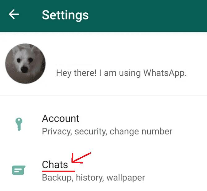 Como-Recuperar-Conversas-Apagadas-do-Whatsapp-Android-1