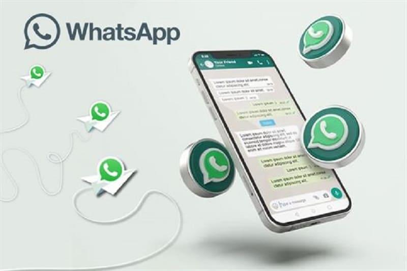 como verificar conta do whatsapp business
