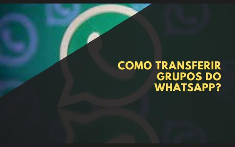 como transferir grupos do whatsapp