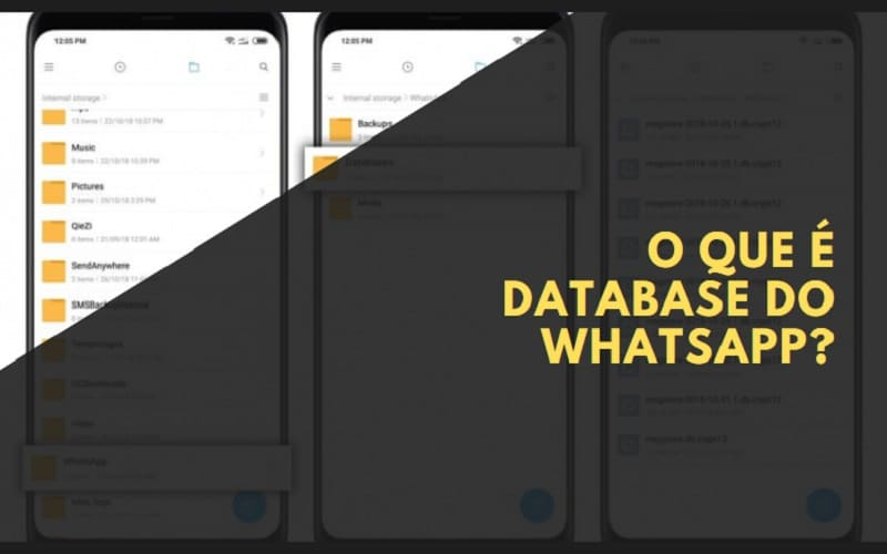 o que é database do whatsapp